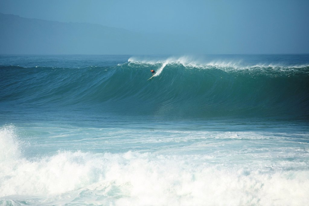 Hawaii, Oahu, North Shore, Waimea Bay, Surfer appears tiny when catching giant wave. : Stock Photo