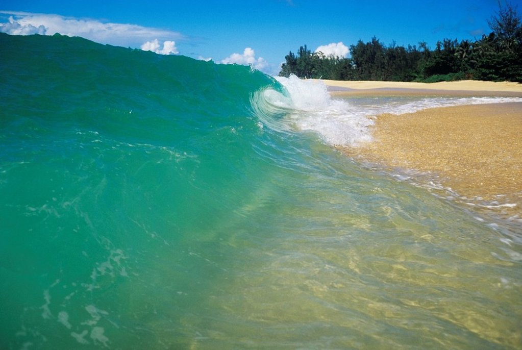 Hawaii, Oahu, North Shore, Turquoise wave curling onto sandy beach. : Stock Photo