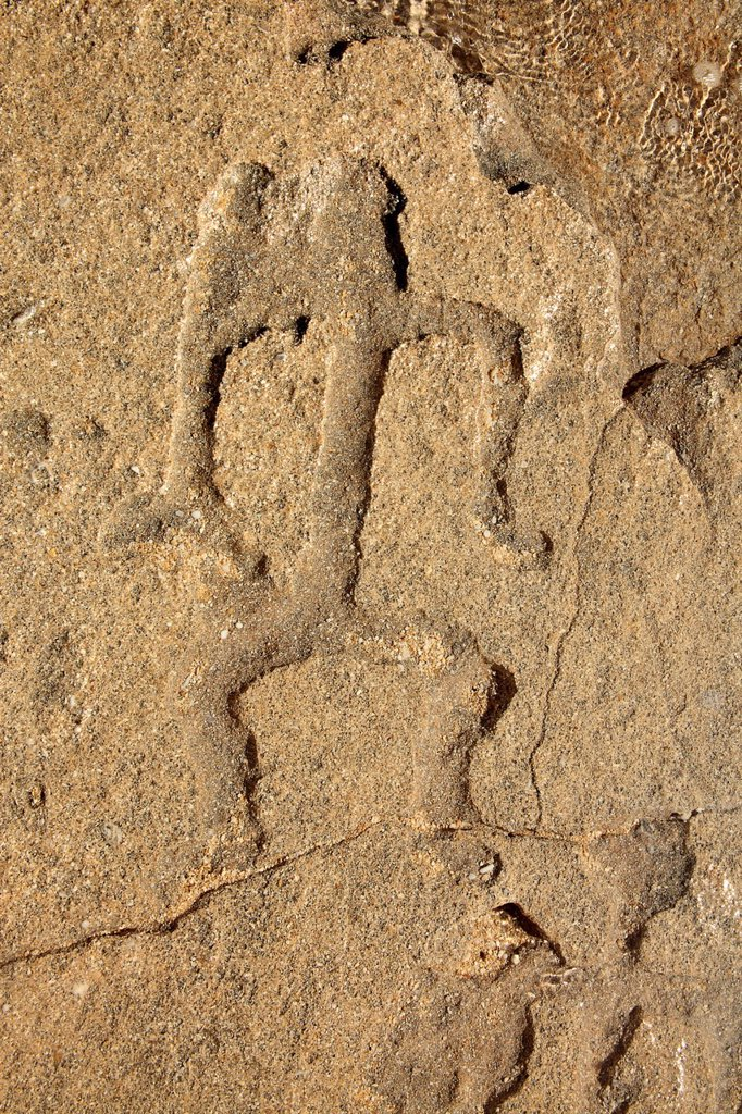 Stock Photo: 1760-13632 Hawaii, Hawaiian Petroglyph in rock.