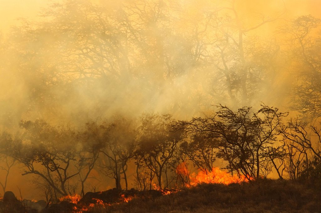 Hawaii, Maui, Ma´alaea, Wildfire burning brush on West Maui Mountains, Smoky haze. : Stock Photo