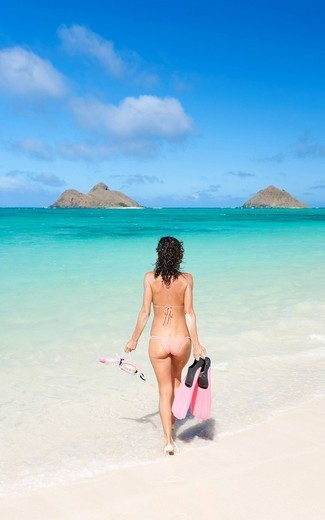 Hawaii, Oahu, Lanikai Beach, Woman walking into ocean with snorkel gear. : Stock Photo