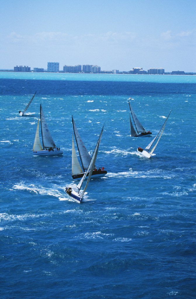 Stock Photo: 1760-1488 Florida, Miami, Southern Ocean Racing Conference, February-March 2004.