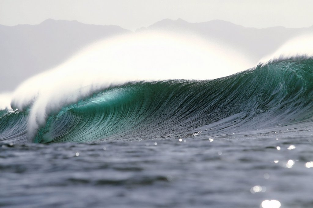 Hawaii, Oahu, North Shore, Beautiful empty wave at pipeline, afternoon light. : Stock Photo