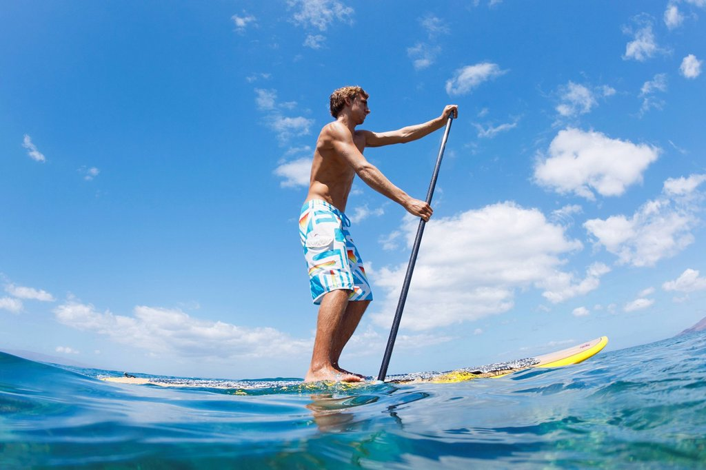 Hawaii, Maui, Athletic young man on a stand up paddle board : Stock Photo