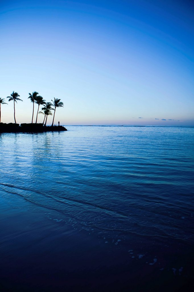 Hawaii, Oahu, Kahala Beach, Early morning light on the water : Stock Photo