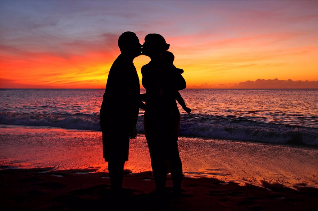 Silhouette of a family on the beach. : Stock Photo