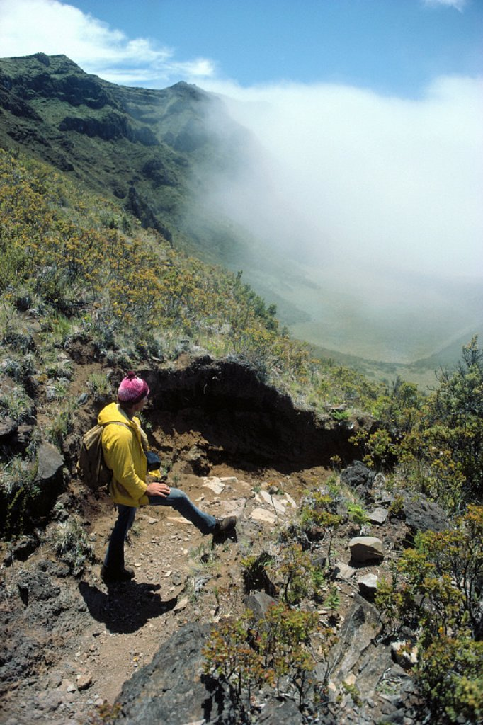 Maui, Haleakala Nat´l Park, Kalapawili ridge trail hiker overlooks cloud covering : Stock Photo