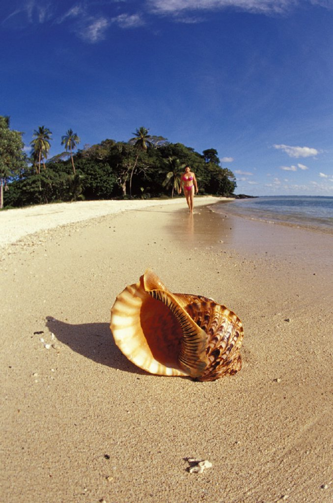 Fiji, Wakaya Island, woman walking background with shoreline and shell : Stock Photo