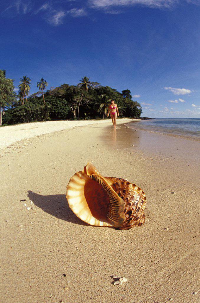 Fiji, Wakaya Island, woman walking background with shoreline and shell : Stock Photo