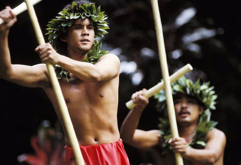 Hawaii, Oahu, Waimea Falls, Makahiki Festival, Male kahiko dancers with kaalau sticks : Stock Photo