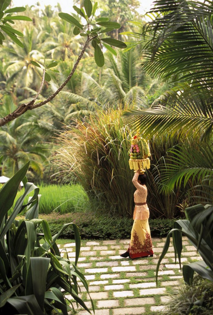 Four Seasons Bali, Sayan, outdoor area w/ local woman carrying food atop head NO MODEL RELEASE : Stock Photo