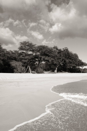 Hawaii, Maui, Makena State Park, Oneloa or Big Beach, Water lapping onto shore, View from ocean Sepia photograph : Stock Photo