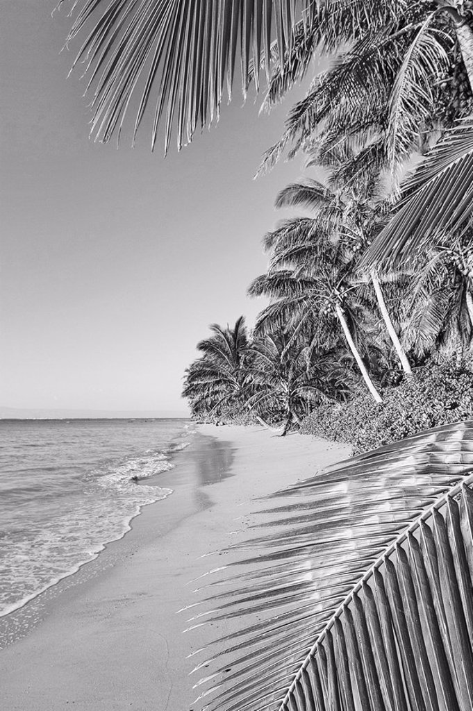 Hawaii, Molokai, Remote south shore beach Black and white photograph : Stock Photo