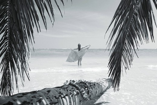 Hawaii, Oahu, Woman on beach holding pareo, Palm fronds frame Black and white photograph : Stock Photo