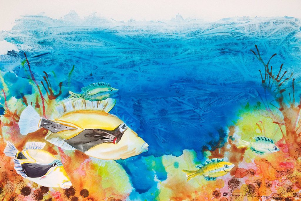 Hawaiian Triggerfish, Hawaiian state fish on tropical reef scene Watercolor painting : Stock Photo
