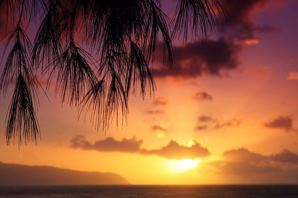 Stock Photo: 1760-7960 Hawaii, Oahu, Beautiful sunset.