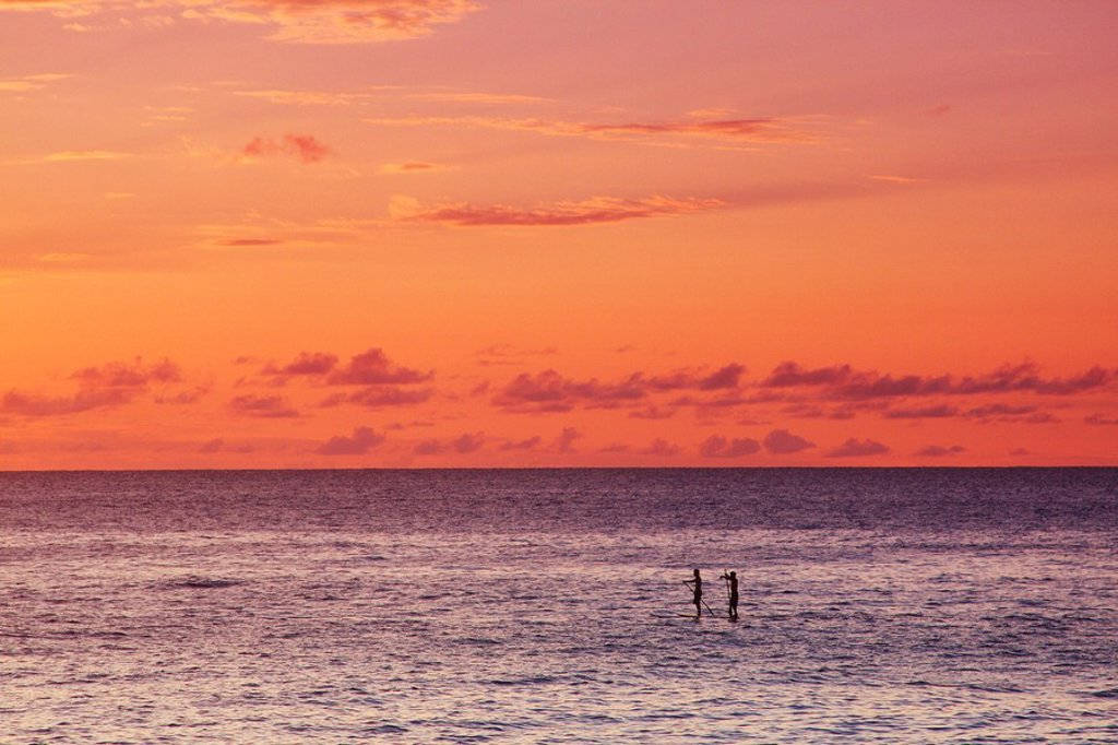 Hawaii, Oahu, North Shore, Stand up paddling at sunset. : Stock Photo