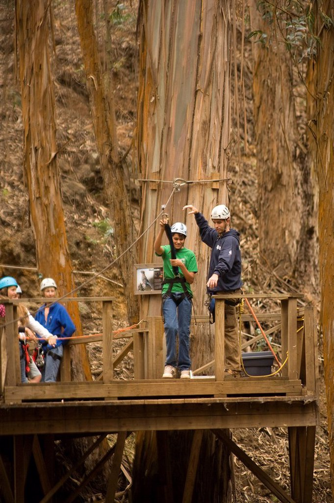 Hawaii, Maui, Zipline Adventure, Young boy getting ready to ride the zipline. : Stock Photo