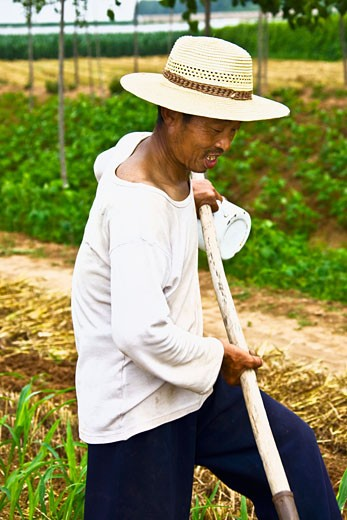 Mature man working in a field, Zhigou, Shandong Province, China : Stock Photo