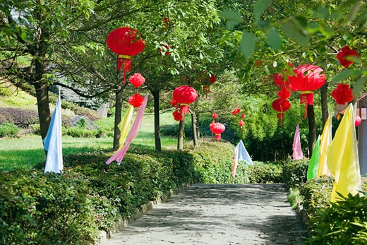 Stock Photo: 1768R-13472 Chinese lanterns hanging on trees, Emerald Valley, Huangshan, Anhui Province, China
