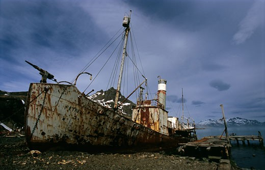 Wrecked whaling ship at the coast, Grytviken, South Georgia Island, Falkland Islands : Stock Photo