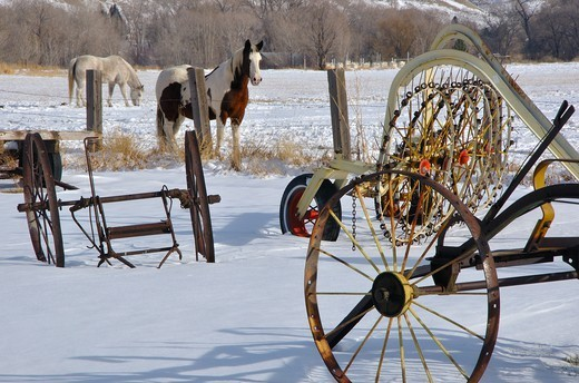 Stock Photo: 1772-798 Old farm equipment and horses