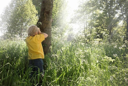 Boy playing hide and seek : Stock Photo