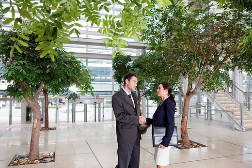 Business couple in Lobby : Stock Photo