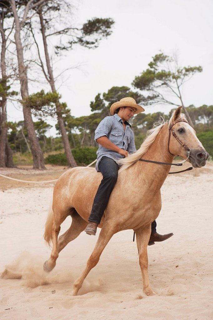 man sitting on horse : Stock Photo