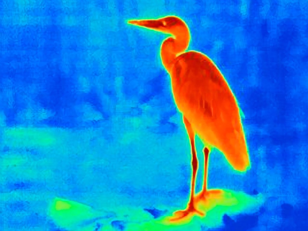 Thermal image of heron : Stock Photo
