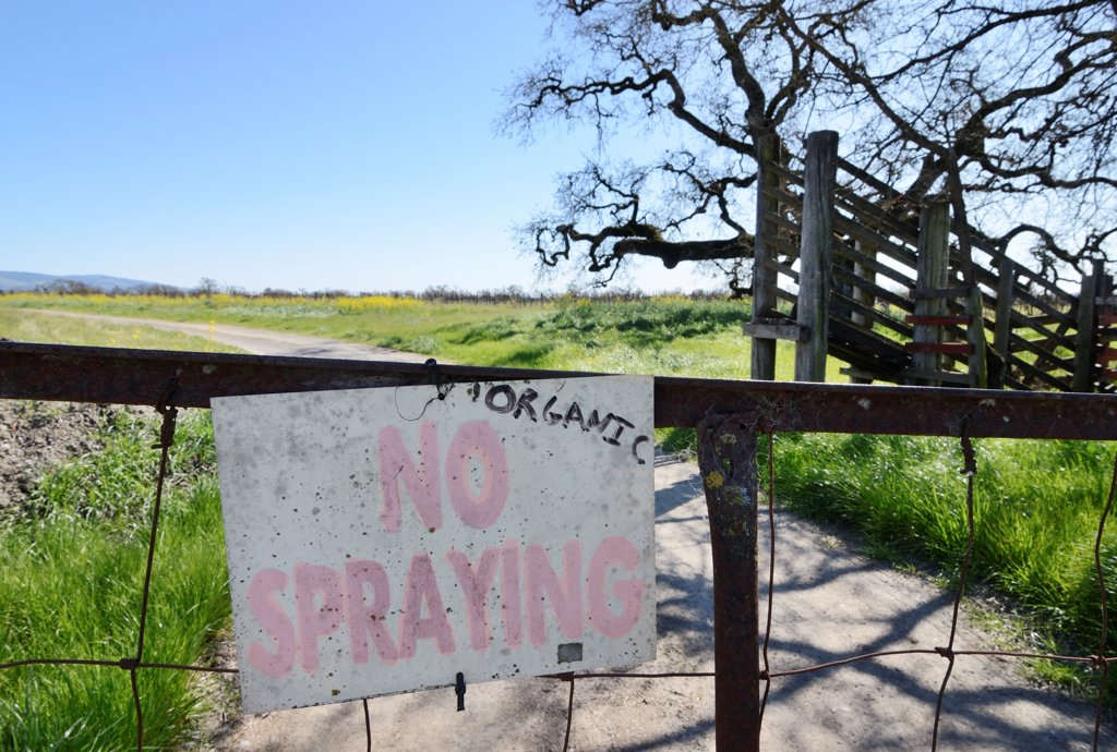 No spraying sign at organic farm : Stock Photo