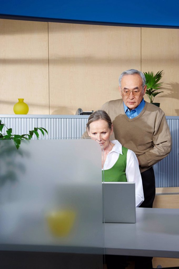 Stock Photo: 1773R-107618 Senior man and woman by office desk