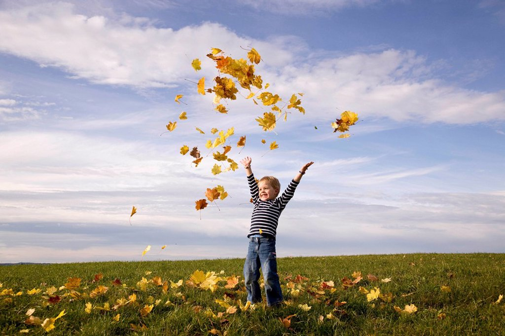 Stock Photo: 1773R-107866 Boy throwing leaves into the air