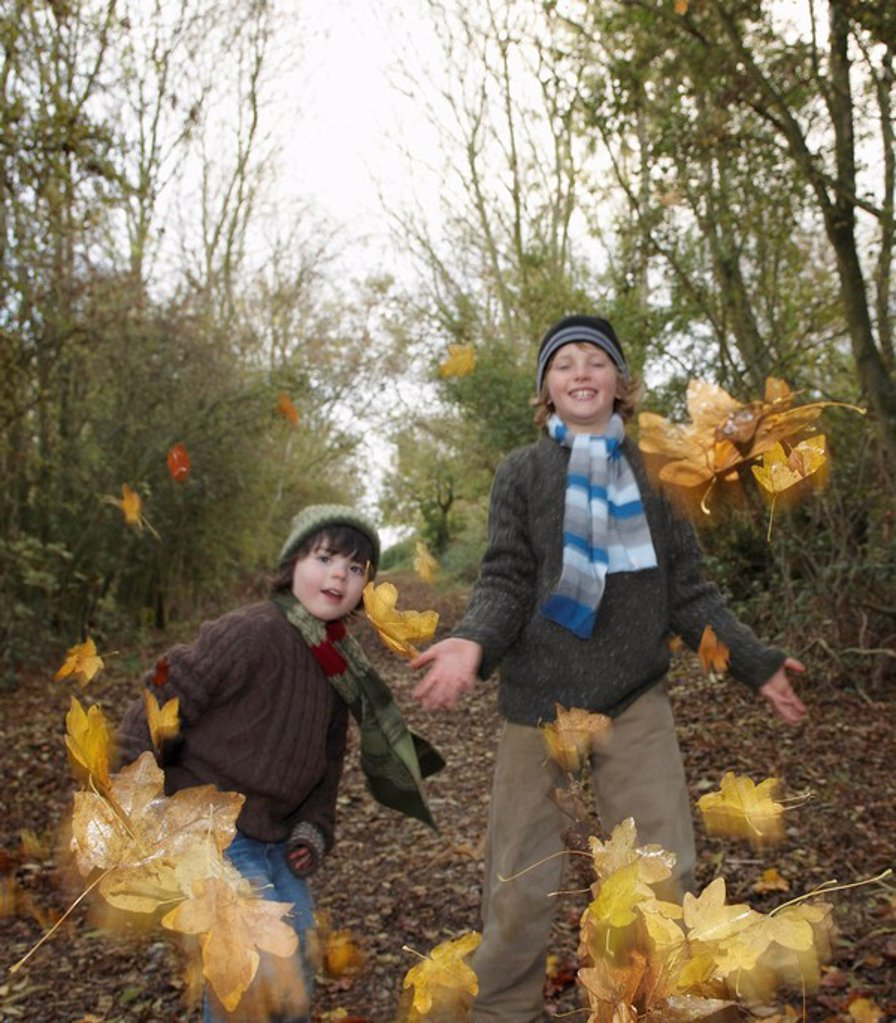 Boys throwing autumn leaves : Stock Photo