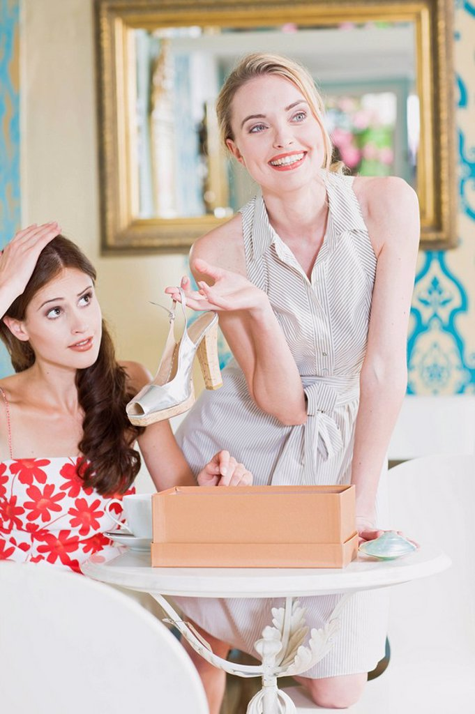 Stock Photo: 1773R-112710 girls after a successful shopping day