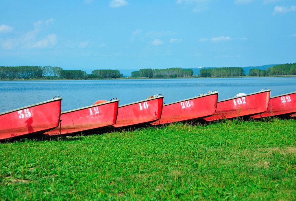 Stock Photo: 1773R-151481 Numbered boats docked by lake