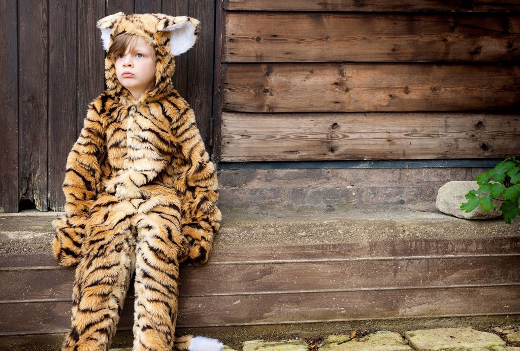 Stock Photo: 1773R-171202 Boy wearing tiger costume outdoors