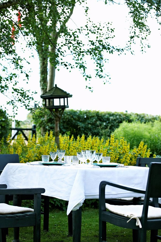 Set table in backyard : Stock Photo