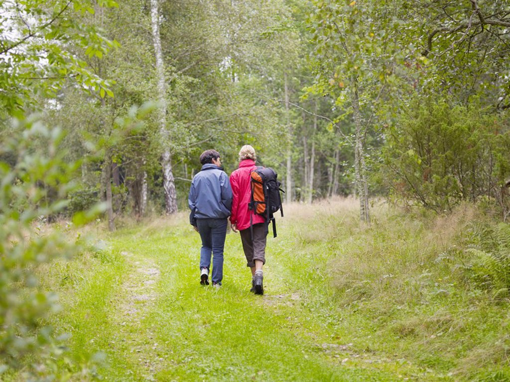 Two women walking through a forest with a backpack smiling : Stock Photo