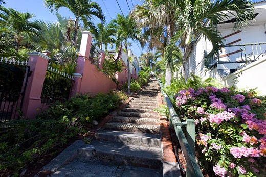 Low Angle View of the Famed 99 Steps, Charlotte Amalie,St Thomas, US Virgin Islands : Stock Photo