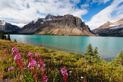 View of the Bow Lake with the Crowfoot Mountain During Summer, Alberta, Canada : Stock Photo