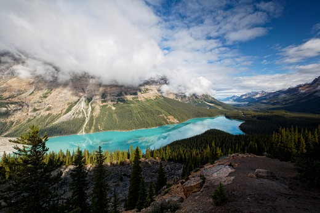Canada, Alberta, Peyto Lake, Glacial Lake, high angle view : Stock Photo