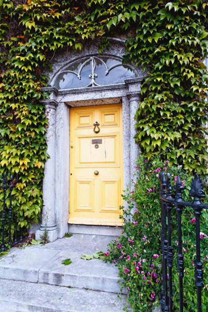 Ireland, County Cork, Kinsale, Ivy Around Traditional Victorian Style Entrance Door : Stock Photo