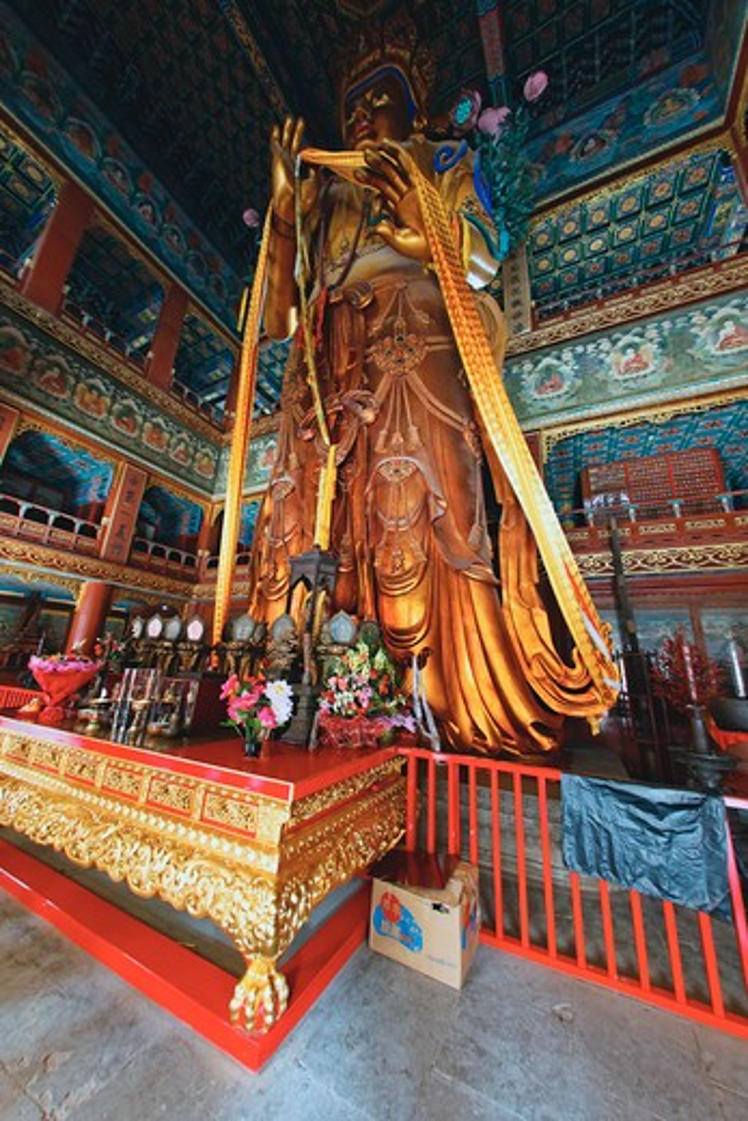 China, Beijing, Giant Buddha Statue in YongHeGong Lama Temple : Stock Photo