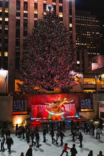 Stock Photo: 1774-792 USA, New York State, New York City, Decorated Christmas Tree at Rockefeller Center Ice-skating Rink