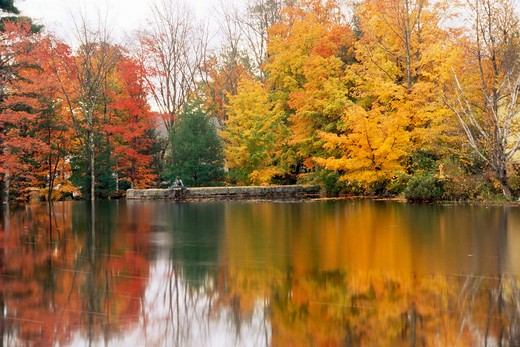 USA, New Hampshire, Fall trees surrounding Ossipee Lake : Stock Photo