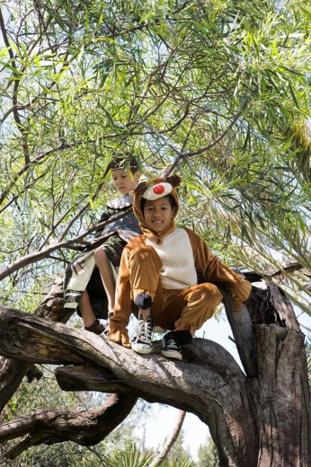 Children in costume climbing in tree : Stock Photo