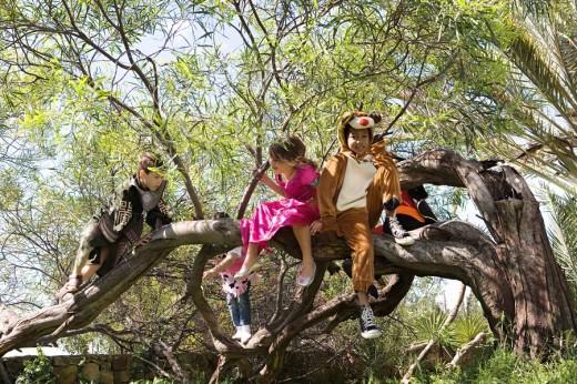 Children in costume climbing in tree : Stock Photo