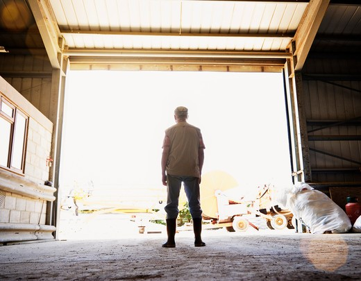 Farmer looking out from inside barn : Stock Photo