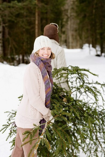 Stock Photo: 1775R-19916 Couple carrying Christmas tree in woods